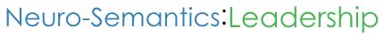 Neuro-Semantics Leadership